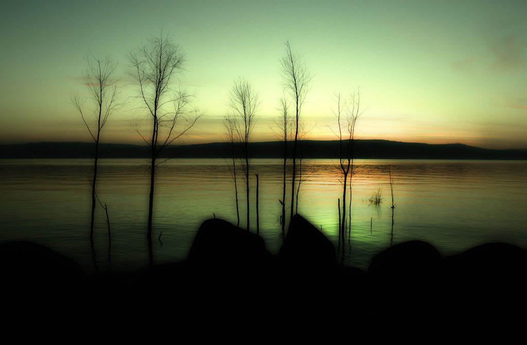צילום טבע ונוף